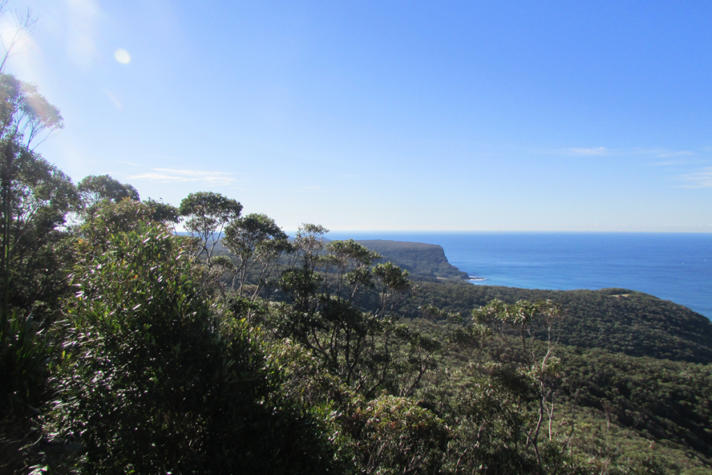 2015 | Governor Game lookout, Royal National Park, Sydney - Australia