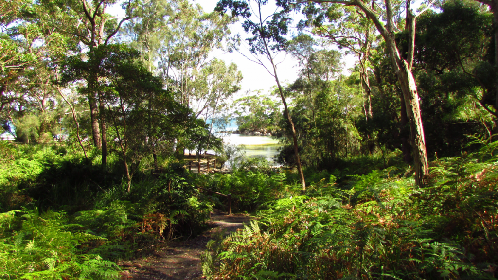2015 | Booderee National Park, Jervis Bay – Australia