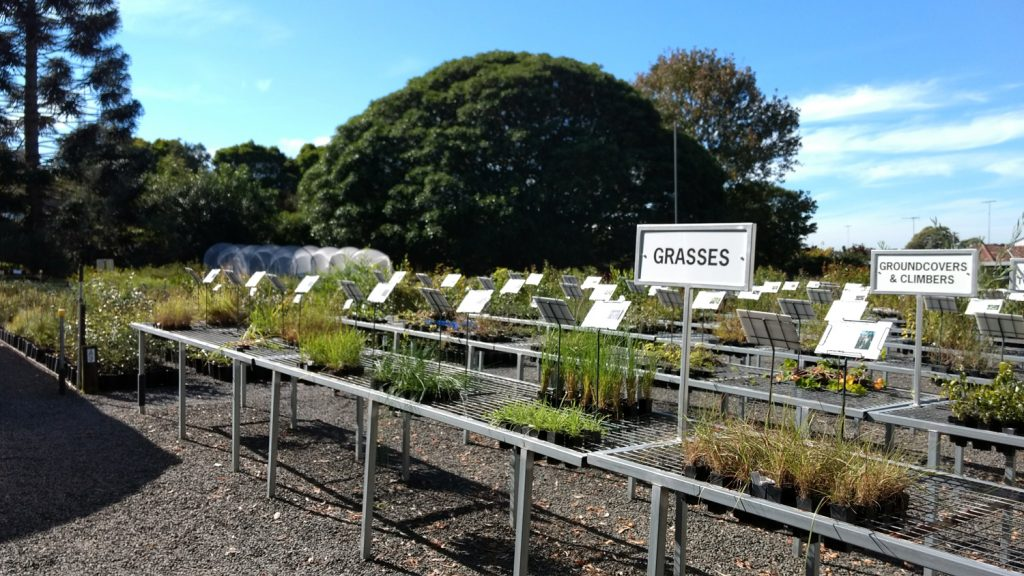 Sutherland Shire - Organic Gardening Workshop